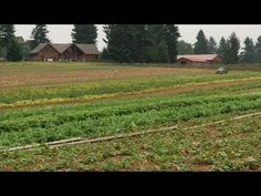 As the Urban Growth Boundary Approaches: A Wary Farmer Notices