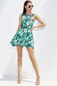 palm leaf print fit and flare dress