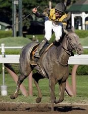 Irish Smoke(2005)(Filly) Smoke Glacken- Added Time By Gilded Time. 3x4 To Mr Prospector, 5x5 To Bold Ruler & Native Dancer. 9 Starts 2 Wins 2 Seconds 1 Third. $217,241. Won Spinaway S  (G1), 2nd Dearly Precious S.