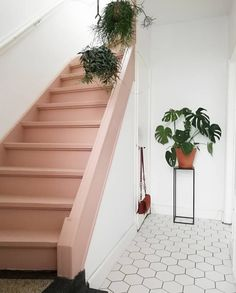 Ideas basement stairs painted staircase Ideas basement stairs painted staircase makeover stairsTrap verven: tips, inspiratie en voorbeelden Painted Staircases, Painted Stairs, Stair Builder, Stairs Colours, Deco Rose, Building Stairs, House Stairs, Basement Stairs, Garden Stairs