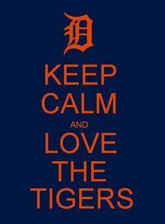 pictures of detroit tigers | Detroit Tigers = | Let's Go Tigers!!!
