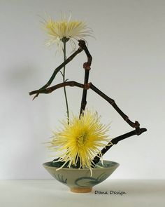 Ikebana Arrangements, Unique Flower Arrangements, Ikebana Flower Arrangement, Unique Flowers, Vintage Flowers, Bonsai, Ikebana Sogetsu, Hana, Organic Art