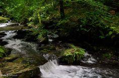 Cascades at St Nectan's Glen, Tintagel, Cornwall
