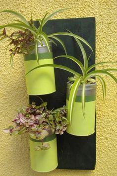 recup, boite de conserve, plante