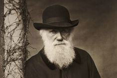 Though Quiet and Studious, Charles Darwin Shook Up Science and Society