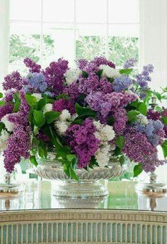 Reminds me of being at my grandma's when I was little.she had at least one of every color Lilac tree in her yard and would always have a cut bouquet in a vase on her kitchen table. Fresh Flowers, Purple Flowers, Beautiful Flowers, Beautiful Life, Lavender Flowers, Simply Beautiful, White Flowers, Deco Floral, Arte Floral