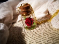 Enchanted Red Rose - Rose in a Bottle Vial Necklace - Beauty and the Beast Necklace