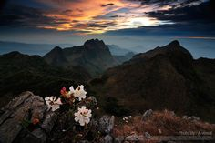 The Mountains.  Chiang Dao, Thailand, by Chainarong Phrammanee.