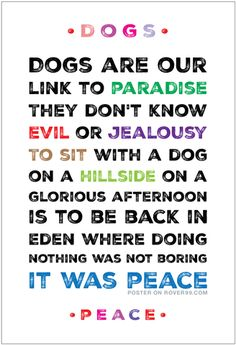 *Link To Paradise | Poster - Dogs are our link to paradise. They don't know evil or jealousy. To sit with a dog on a hillside on a glorious afternoon is to be back in Eden where doing nothing was not boring - it was peace. Based on a quote by Milan Kundera