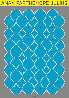 """Poster2 Group exhibition """"mushi no mori"""" Design: Seita Kobayashi"""