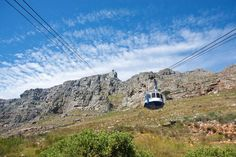 Half Day Cape Point Tour from Cape Town , Wildlife Safari, Day Tours, Bergen, Cape Town, Strand, Mount Rushmore, Mountains, Travel, Templates