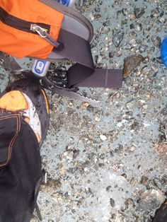 Montblanc trip 2014: standing on Mer de Glace
