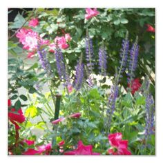Garden Flowers Art Photo