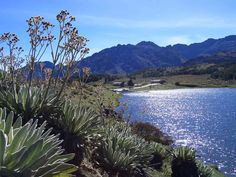 La Laguna de Mucubaji es de origen glacial y tiene unos diez mil años de antigüedad, está situada en la vía que va de Apartaderos hacia Santo Domingo y Barinas y es el punto de partida para excursiones hacia el Pico Mucuñuque en el extremo noreste del parque nacional Sierra Nevada. De manera que la laguna tiene acceso para automóviles, los cuales estacionan a tan solo metros del muelle de la laguna y del Centro de Visitantes.