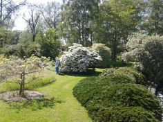 fullers mill garden - Google Search