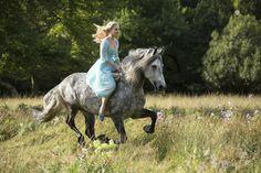Cinderella 2015 Riding Horse #Cinderella #Horse #Review #Gallery #FairyTale #LilyJames #OnceUponATime #HappilyEverAfter Via SamStormbornOrmandy.com