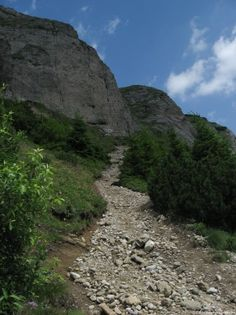 Image of a climbing path with stones on Ceahlau Massive Road Pictures, When It Rains, High Resolution Images, Garden Paths, Good Times, Climbing, Trail, To Go, Journey