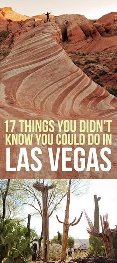 17 Things You Didn't Know You Could Do In Las Vegas....apparently I've been missing a lot!