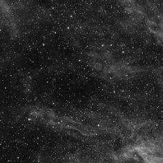 Nebulosa Saco de Carbón Norte (LDN 896 o Barnard 346 (B346) y 348 (B348) y 349 (B349)). Nebulosa oscura en la constelación Cygnus. Formada de polvo y gas que, al no recibir luz ni energía de ninguna estrella, carece de brillo. Se aprecia como una línea oscura sobre el fondo brillante de la Vía Láctea.