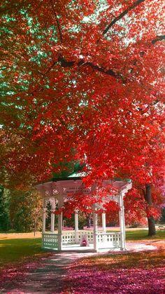 Gazebo in autunno