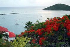St. Thomas, U.S.Virgin Island;  View of the Harbor in Charlotte Amalie, St. Thomas__Photos by Frommer's.
