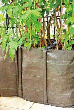 Le BACLONG de BACSAC : parfait pour délimiter des espaces sur votre terrasse ou pour cacher la vue du voisin !