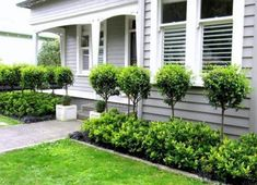 80 Easy and Cheap Landscaping Ideas for Your Front Yard That Will Inspire - All For Garden Modern Front Yard, Front Yard Design, Outdoor Landscaping, Front Yard Landscaping, Front Garden Landscape, Front Landscaping Ideas, Front Yard Ideas, Hillside Landscaping, Garden Shrubs