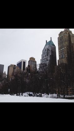 central park, winter