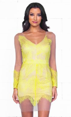 Tempting Muse Yellow Beige Sheer Mesh Lace Long Sleeve V Neck Zip Back Bodycon Mini Dress