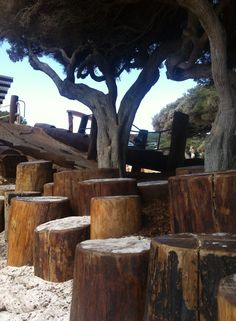 yallingup play scape by josh Byrne - different height logs as a retaining wall