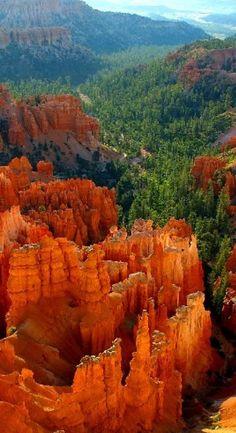 Bryce Canyon ~ Utah • by John Sullivan