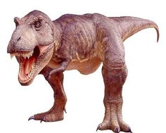 Tyrannosaurus Rex (lived in the Late Cretaceous) (67 - 65 million years ago)