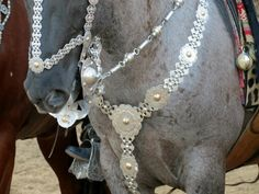 Horse Armor, Horse Gear, Horse Tack, Horse Bits, Headstall, Indian Head, Saddles, Beautiful Horses, Knight