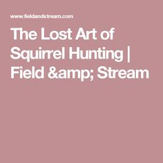 The Lost Art of Squirrel Hunting | Field & Stream