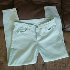 [BLANKNYC] Mint colored jeans (sold at Nordstrom) Beautiful Mint colored straight leg/ skinny jeans. These are in great shape. No rips, tears or stains. I included a picture of the bottom seams, clean, flawless. Size 31. [BLANKNYC] Jeans