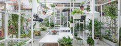 The Hanoi hangout is covered with air-purifying plants so visitors can breathe easyAir pollution is a growing concern in cities around the globe, and while some may turn to enormous smog-sucking towers, Vietnamese architect Hung Nguyen is instead looking to nature's air-cleaner: plants. His recent wo