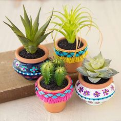 Natural looking succulents pot is hand crafted terra cotta pots with colorful fringe trim. The perfect houseplant, faux succulents mean you'll never have to water! They'll look super-cute on your work desk, bedroom dresser or on your kitchen window sill! Colorful Succulents, Succulent Pots, Cacti And Succulents, Planting Succulents, Painted Flower Pots, Painted Pots, Deco Cactus, Tapete Floral, Plantas Indoor