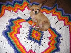 rainbow ripple blanket by mimi_mia, via Flickr    purchase this pattern on Ravelry for $6