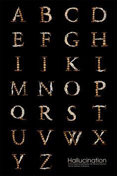 Typography 3 HALLUCINATION