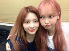 South Korean Girls, Korean Girl Groups, Secret Song, Thing 1, Recent Events, Japanese Girl Group, 1 Girl, Blusher, 3 In One