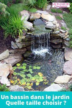 Small Backyard Ponds, Backyard Water Feature, Backyard Ideas, Backyard Waterfalls, Modern Backyard, Backyard Designs, Small Ponds, Small Garden Fish Ponds, Outdoor Fish Ponds