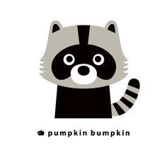Raccoon, pumpkin bumpkin