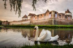 Cetatea Făgărașului este cel mai important monument al regiunii Făgăraș, dar și una dintre cele mai mari și bine păstrate structuri medievale din România și din Europa. Cetatea are o istorie de peste 600 de ani și a fost locul balurilor organizate de doamna Stanca, cetate de apărare, dar şi închisoare. Acum este muzeu şi …