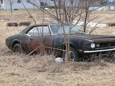 classic cars rotting  | today i saw a goldmine of classic cars rotting. - NastyZ28.com
