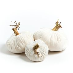 "This creamy white pile of velvet yumminess is a perfect set to use year round! The velvet Plush Pumpkin Snow Trio set of 3 pumpkins include a 6"", 5"" and 4"" Snow pumpkin. Each velvet pumpkin is finished with a natural, organic stem. via LoveFeastShop.com"