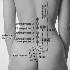 Acupressure point or Bladder 23 is also known as the Kidney Shu and vital points of acupressure lower back pain. back pain dolor de espalda Meridian Acupuncture, Acupuncture Benefits, Acupuncture Points, Massage Benefits, Acupressure Points, Shoulder Pain Relief, Lower Back Pain Relief, Hip Pain, Back Pain Remedies