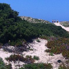 praia da areia branca, lourinhã, lisboa, lisbon, portugal