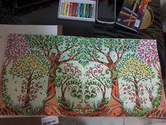 Floresta Encantada Johanna Basford