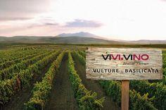 """#ViviVino arriva in Basilicata, precisamente alle propaggini dell'ormai estinto Vulcano """"Monte Vulture"""", casa di uno dei più grandi Rossi d'Italia !! Click, #Taste and Enjoy !  www.vivivino.it"""