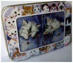 Kissakortit rasiassa 16,90